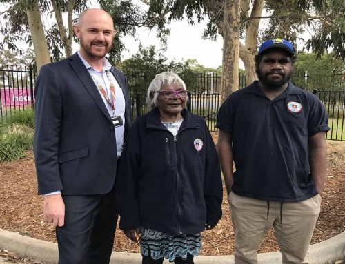 Aboriginal healers treat patients in SA hospitals