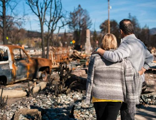 State governments initiate mental health measures during bushfire crisis