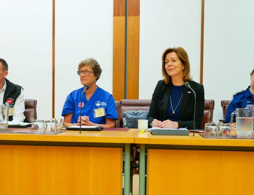 Nurses and frontline workers call for action at Emergency Services Summit on bushfire crisis