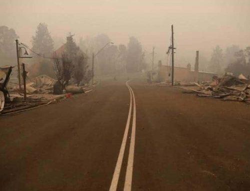 'It felt like Armageddon': Responding to Australia's bushfire crisis