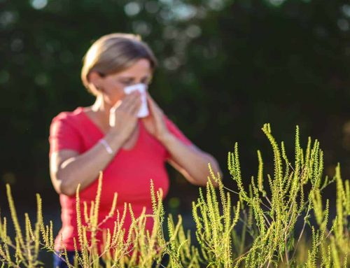 Free Asthma education for health professionals in time for spring