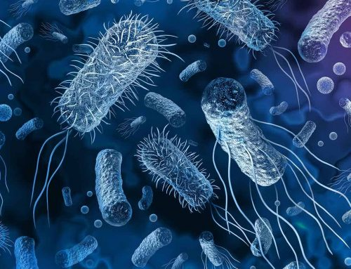 Superbugs on track to kill more people than COVID-19, infectious disease experts warn