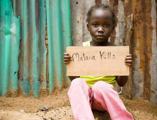 Commonwealth countries recommit to halving malaria rates by 2023